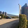 写真: Camera7で撮影した「くりの木ランチ」のタンクに描かれた豚 - 1