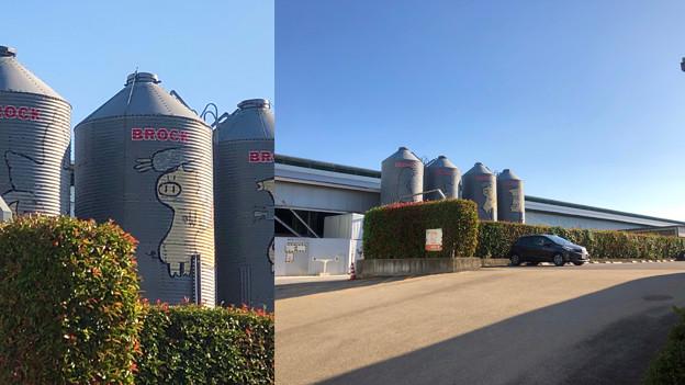 Camera7で撮影した「くりの木ランチ」のタンクに描かれた豚 - 2