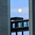 愛知大学の校舎の間から見えた昇ったばかりの満月(2018年9月23日) - 1