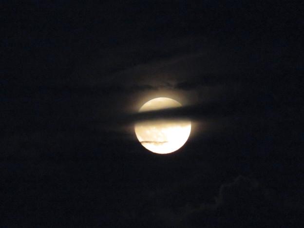 雲の隙間から顔をのぞかせてた中秋の満月(2018年9月24日) - 15