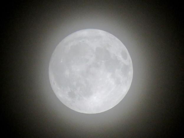 薄曇りの中秋の満月(2018年9月24日) - 5