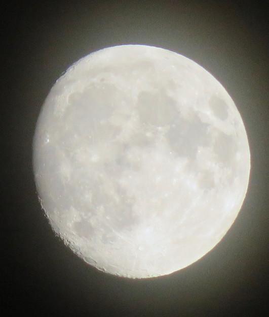 名古屋駅周辺で見上げた月(2018年9月22日) - 2