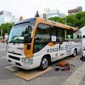 Photos: 久屋大通公園:動物フェスティバル 2018 No - 6(ネコのバス)