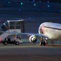 写真: エアポートウォーク名古屋 No - 10:着陸した飛行機の周りで作業する人たち