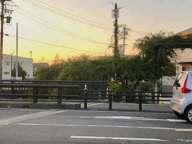 藤棚だけが残されてた旧・清流亭(2018年10月) - 1