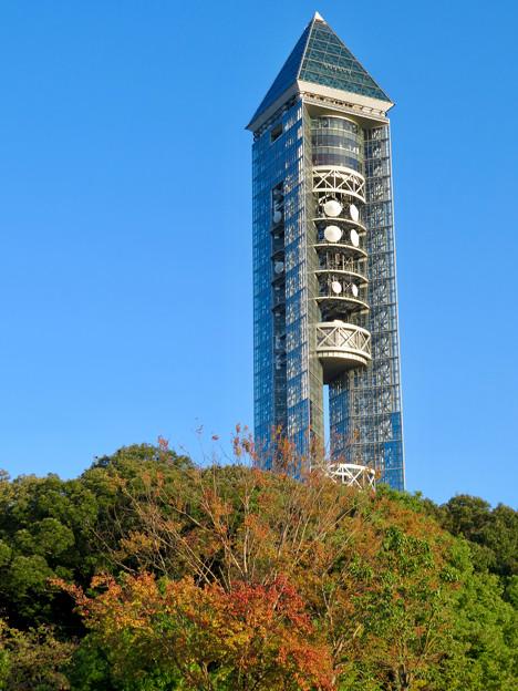 東山動植物園(2018年10月) - 8:紅葉し始めた木々と東山スカイタワー