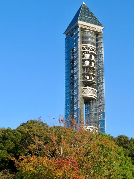 東山動植物園(2018年10月) - 9:紅葉し始めた木々と東山スカイタワー