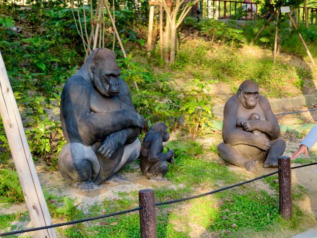 東山動植物園(2018年10月) - 10:記念撮影用のゴリラ像