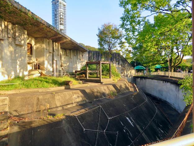 東山動植物園(2018年10月) - 16:旧・ゴリラ舎?