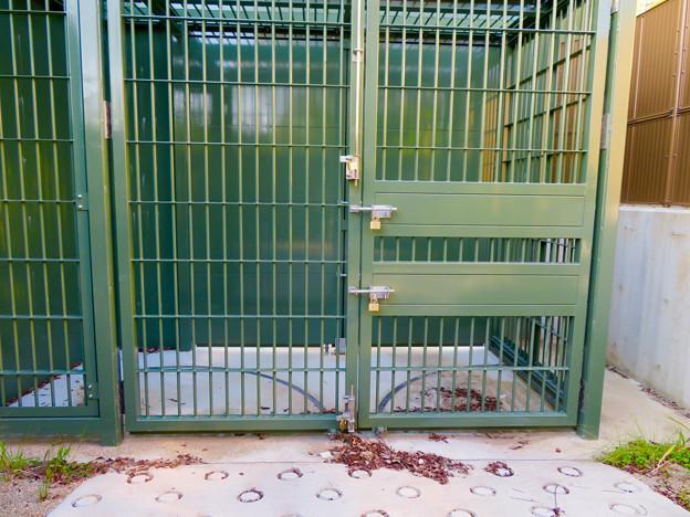 東山動植物園:新ゴリラ・チンパンジー舎 - 35(施設搬入口?)