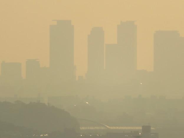 定光寺展望台から見た景色 - 26:名駅ビル群