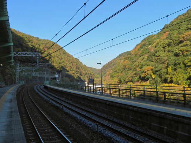 定光寺駅ホームから見た周辺の山々の紅葉 - 3