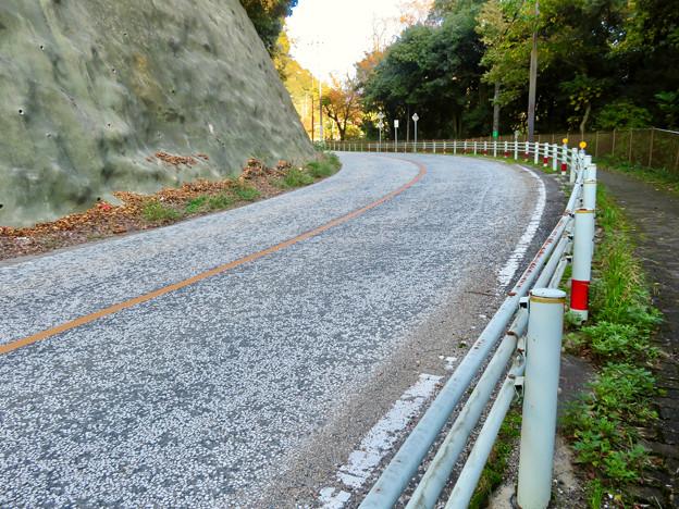 定光寺へと通じる道路:スリップ防止用で白く凸凹に? - 1
