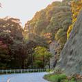 写真: 定光寺川沿いから見た山の紅葉 - 2
