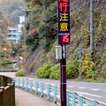 定光寺川沿いの道路の温度計