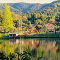 秋の定光寺公園 - 2