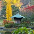 秋の定光寺公園 - 4:弁財天の六角堂