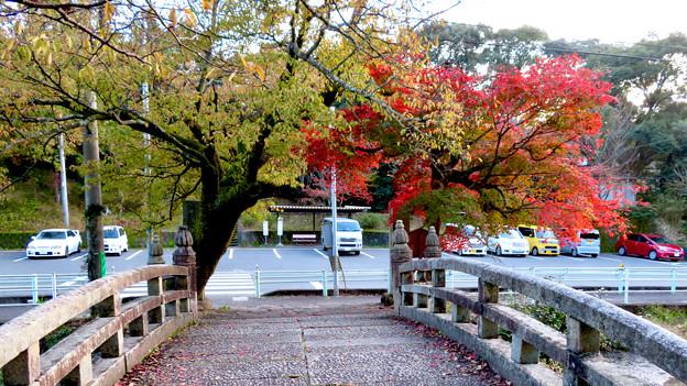 秋の定光寺 No - 80:直入橋(ちょくにゅうばし)と紅葉した木々