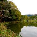 1週間経ったけどあまり紅葉は進んでなかった、定光寺公園(2018年11月18日) - 4