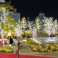 すごく雰囲気が良かった、大名古屋ビルヂング5階「スカイガーデン」のクリスマス・イルミネーション - 2