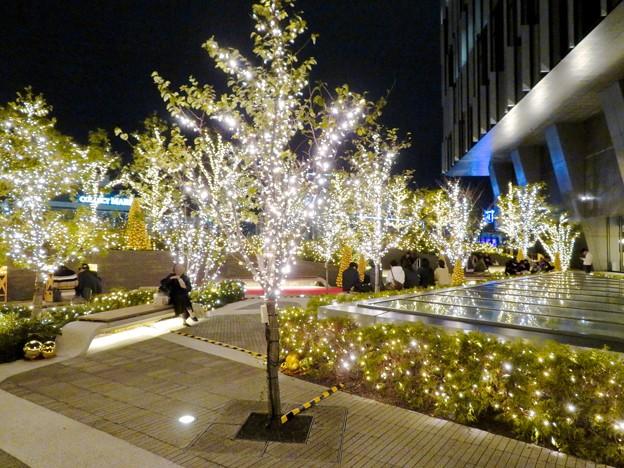 写真: すごく雰囲気が良かった、大名古屋ビルヂング5階「スカイガーデン」のクリスマス・イルミネーション - 7