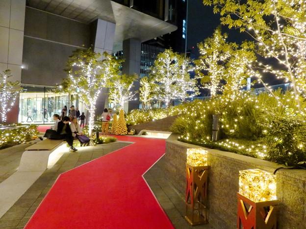 すごく雰囲気が良かった、大名古屋ビルヂング5階「スカイガーデン」のクリスマス・イルミネーション - 14