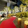 写真: すごく雰囲気が良かった、大名古屋ビルヂング5階「スカイガーデン」のクリスマス・イルミネーション - 14
