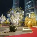 写真: すごく雰囲気が良かった、大名古屋ビルヂング5階「スカイガーデン」のクリスマス・イルミネーション - 17