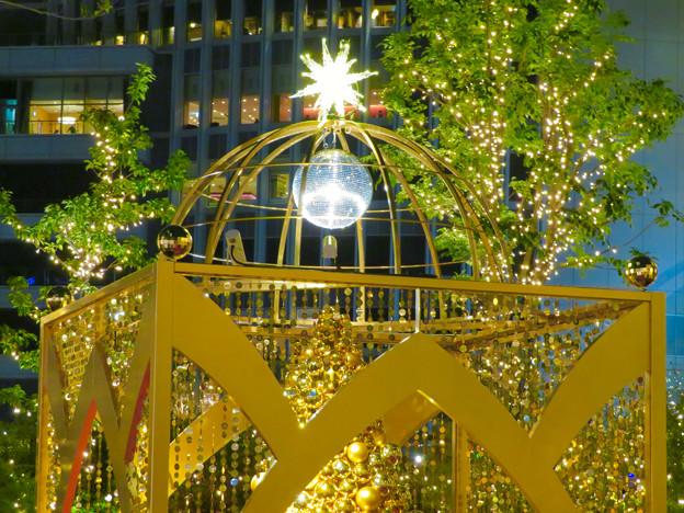 すごく雰囲気が良かった、大名古屋ビルヂング5階「スカイガーデン」のクリスマス・イルミネーション - 26