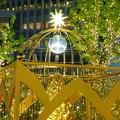 写真: すごく雰囲気が良かった、大名古屋ビルヂング5階「スカイガーデン」のクリスマス・イルミネーション - 26