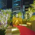 写真: すごく雰囲気が良かった、大名古屋ビルヂング5階「スカイガーデン」のクリスマス・イルミネーション - 29