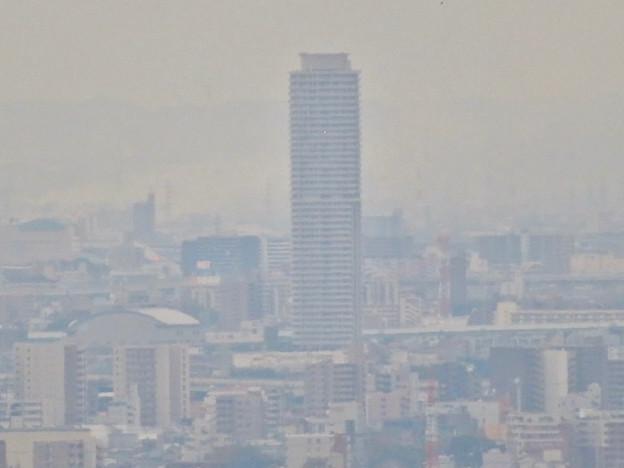 写真: 定光寺展望台から見た景色:ザ・シーン城北