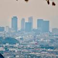 Photos: 定光寺展望台から見た景色:名駅ビル群 - 1
