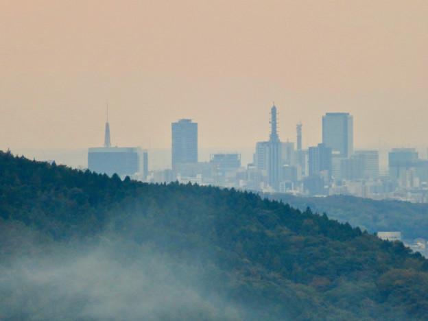 定光寺展望台から見た景色:名古屋テレビ塔 - 1