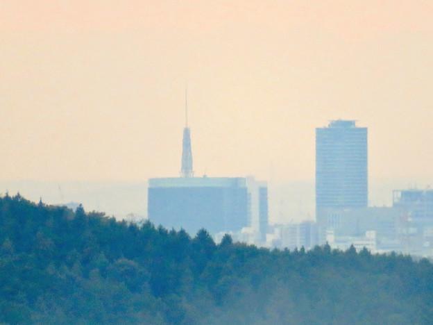 定光寺展望台から見た景色:名古屋テレビ塔 - 2