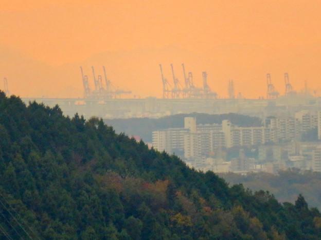 定光寺展望台から見た景色:名古屋港の巨大クレーン - 2