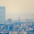 定光寺展望台から見た景色:名古屋城 - 7