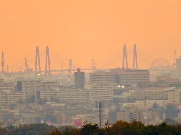 定光寺展望台から見た景色:名港中央大橋とシートレインランドの大観覧車 - 4