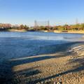 Photos: 水抜き(池干し)された落合公園の池(2018年11月) - 15