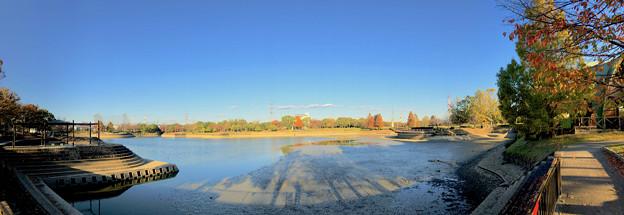 水抜き(池干し)された落合公園の池(2018年11月) - 16:パノラマ