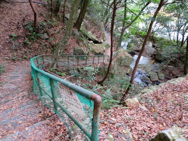 定光寺川沿いの自然歩道(2018年11月18日) - 37