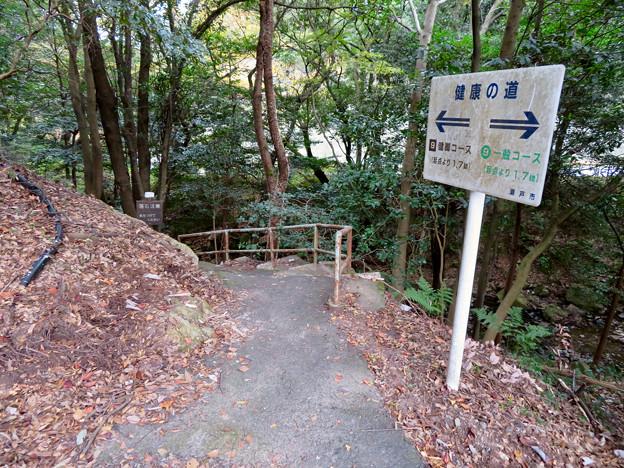 定光寺川沿いの自然歩道(2018年11月18日) - 42