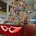 Photos: ゲートタワーのクリスマス・イルミネーション 2018 No - 7