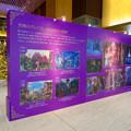 ディズニー映画『くるみ割り人形秘密の王国』とタイアップしたJPタワー名古屋のクリスマスデコレーション - 6