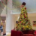 写真: 大名古屋ビルヂング内のクリスマスデコレーション 2018 No - 6
