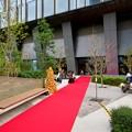 写真: 昼間の大名古屋ビルヂング「スカイガーデン」のクリスマスデコレーション - 10