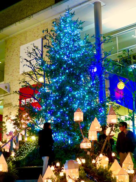星が丘テラスのクリスマス・イルミネーション 2018 No - 2