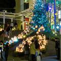 Photos: 星が丘テラスのクリスマス・イルミネーション 2018 No - 11