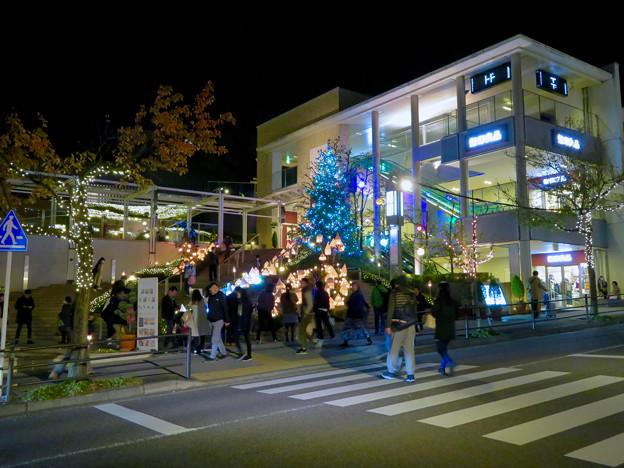 星が丘テラスのクリスマス・イルミネーション 2018 No - 13