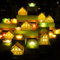 Photos: 東山動植物園 紅葉ライトアップ 2018 No - 3